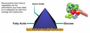 p_micronutrients